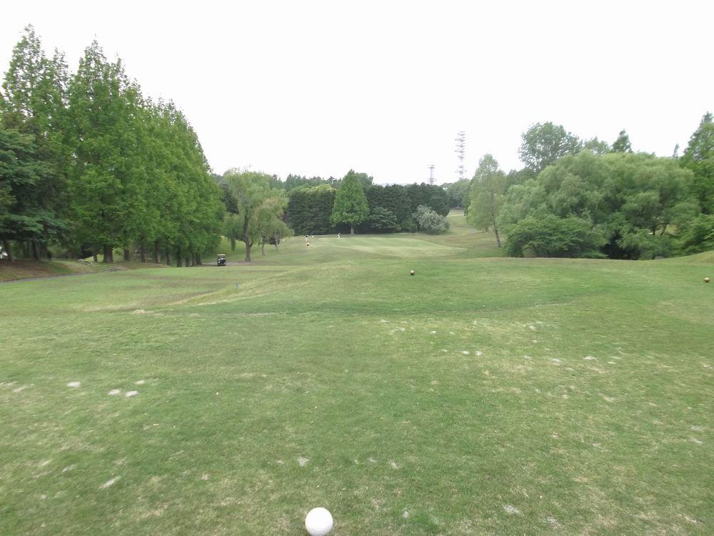 golf3-3