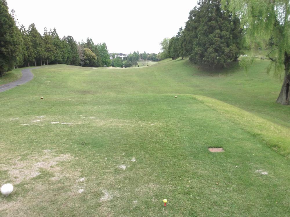 golf3-4