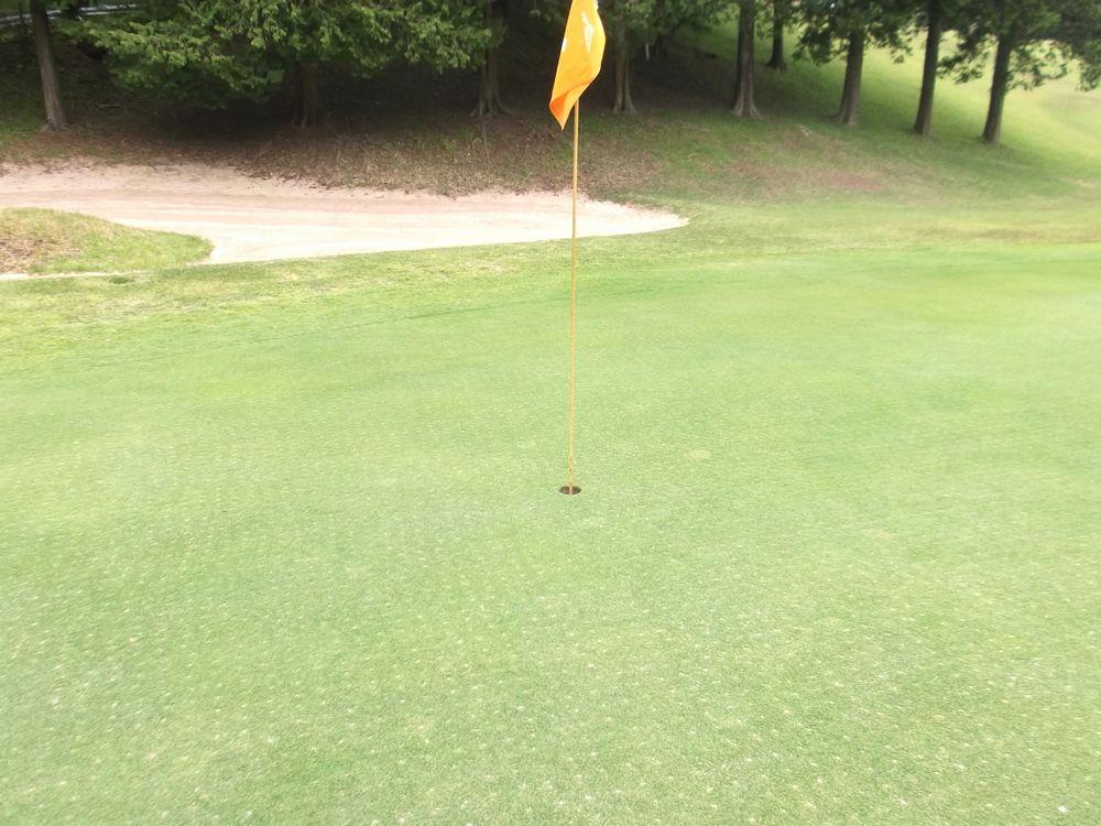 golf3-5