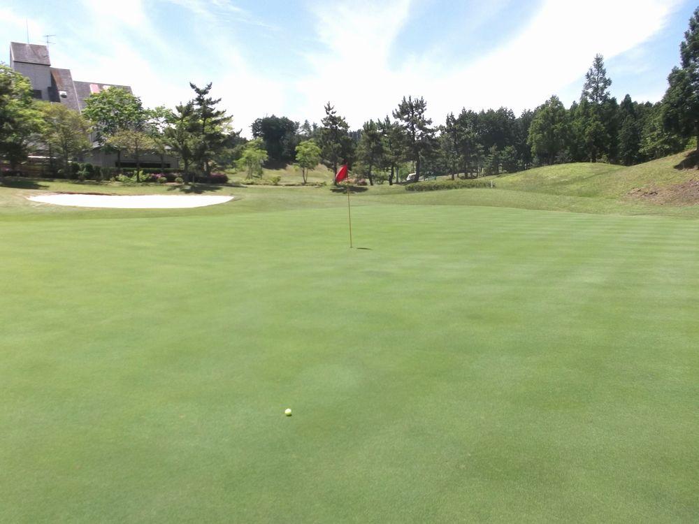 golf6-3