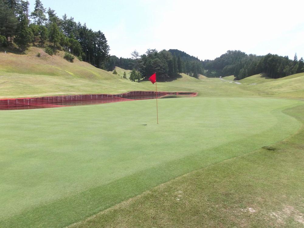 golf6-5